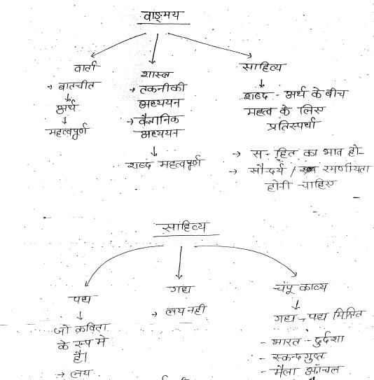 Hindi Literature -Optional Handwritten Notes Drishti IAS Dr  Vikash  Divyakriti